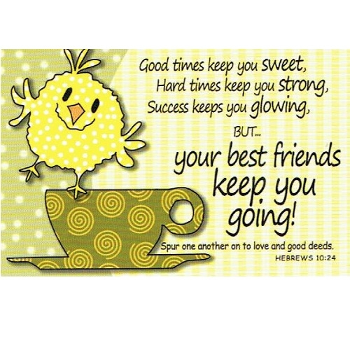(Pkg. 25) Best Friends Keep You Going (Bird on Coffee Cup) Message Cards 29163