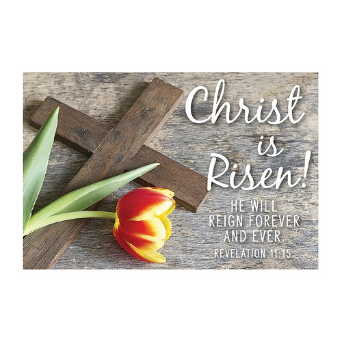 Easter Message Card - Christ Is Risen! He Will Reign Forever F1977