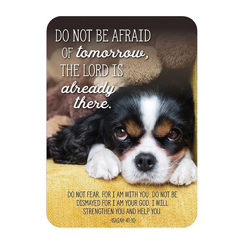 (10 Ct) Do Not Be Afraid of Tomorrow (Puppy) Christian Pocket Cards
