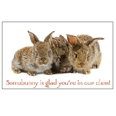 Somebunny Is Glad Postcards - Glad You're in our Class (25) KJV